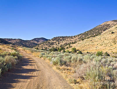 Photograph - Road To Nowhere - Storey Nevada by John Waclo