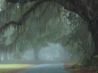 Road To Righteousness Art Print by Laura Ragland