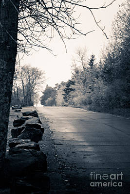 Photograph - Road To The Lake by CJ Benson