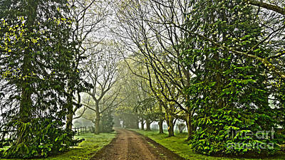 Road To The Manor House Art Print by Andrew Middleton