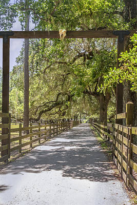 Photograph - Road To The Ranch by Karen Stephenson