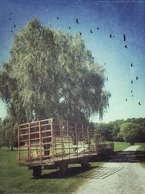 Celebrity Pop Art Potraits - Morgan Horse Farm Vermont farm birds by Andy Gimino
