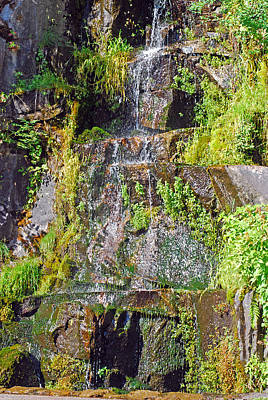 Photograph - Roadside Waterfall. Mount Rainier National Park by Connie Fox