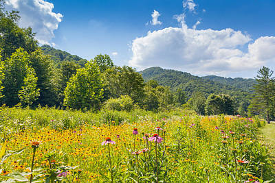 Photograph - Roan Mountain State Park by Melinda Fawver