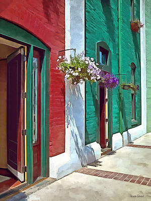 Hanging Baskets Photograph - Roanoke Va - Doors And Hanging Baskets by Susan Savad