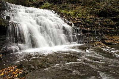 Roaring Falls Salt Springs Print by Christina Rollo