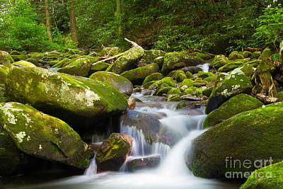 Photograph - Roaring Fork by CJ Benson