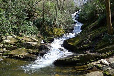 Photograph - Roaring Fork Falls - Spring 2013 by Joel Deutsch
