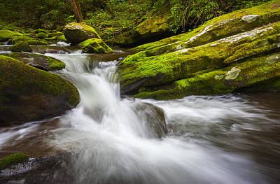 Roaring Fork Great Smoky Mountains National Park Cascade - Gatlinburg Tn Art Print
