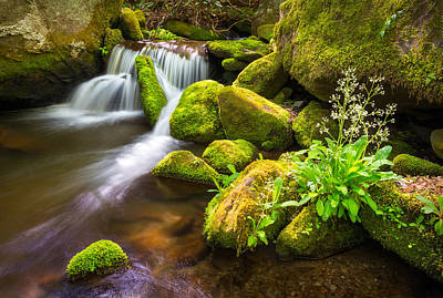 Tn Photograph - Roaring Fork Great Smoky Mountains National Park Tn by Dave Allen