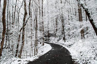Roaring Fork Snowy Road Art Print by Debbie Green