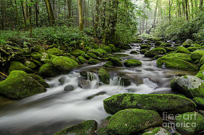 Photograph - Roaring Waters by Anthony Heflin
