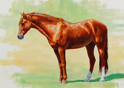 Chestnut Horse Painting - Roasting Chestnut - Morgan Horse by Crista Forest