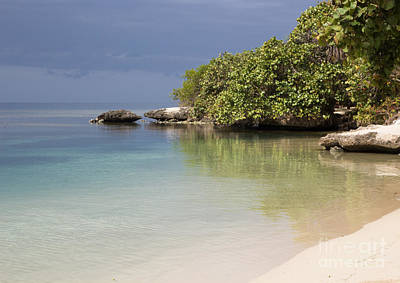Photograph - Roatan Beach by Suzanne Luft