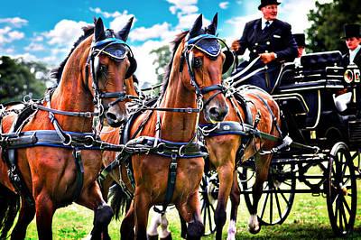 Photograph - Robert Bowman Carriage Driving by Meirion Matthias
