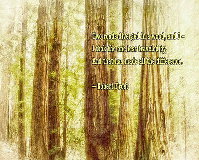 Photograph - Robert Frost Quote And Muir Woods by Marianne Campolongo
