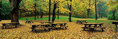 Picnic Table Photograph - Robert Treman State Park, New York by Panoramic Images