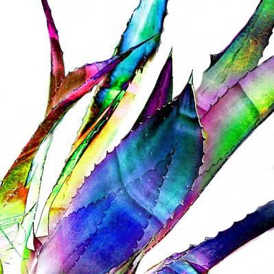 Agave Digital Art - Robert's Cactus 1 by Cindy Edwards