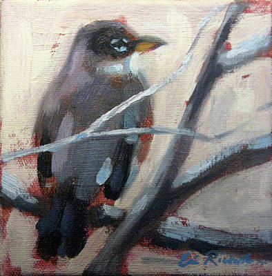Painting - Robin I by Erin Rickelton
