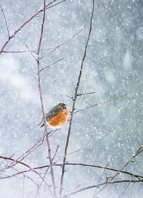 Robin In Snow Art Print by Rebecca Cozart