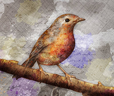 Robin On Branch Art Print