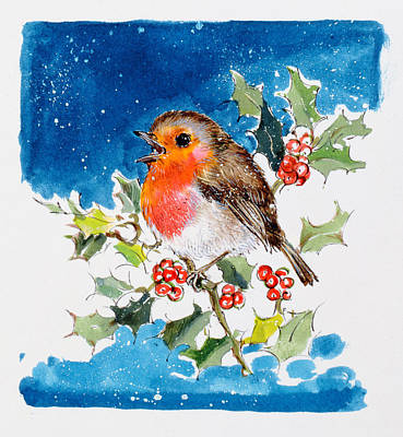 Singing Drawing - Robin Red-breast by Diane Matthes