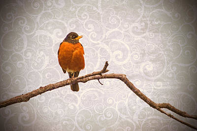 Art Print featuring the photograph Robin With Damask Background by Peggy Collins