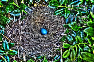 Photograph - Robin's Egg Blue by Craig T Burgwardt