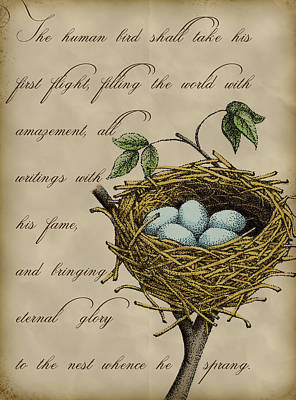 Robin Digital Art - Robin's Nest by Christy Beckwith