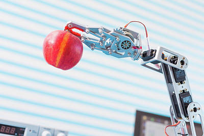 Machinery Photograph - Robotic Arm Holding Apple by Wladimir Bulgar