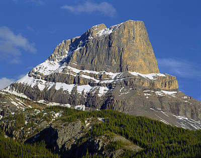 Photograph - 1m3937-roche Miette  by Ed  Cooper Photography