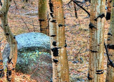 Jerry Sodorff Royalty-Free and Rights-Managed Images - Rock and Aspens 14388 by Jerry Sodorff