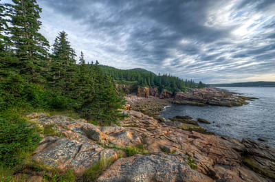 Rock And Pines Of Acadia Art Print by At Lands End Photography