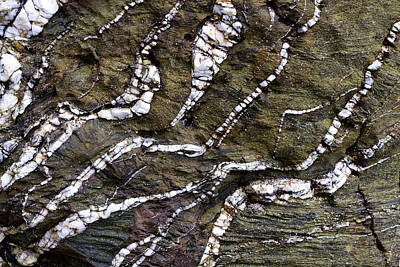 Photograph - Rock Art by Shirley Mitchell