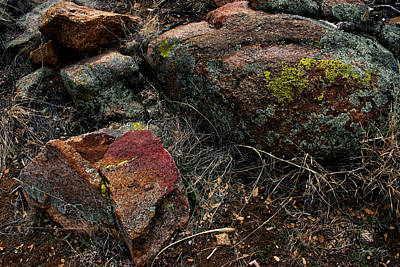 Photograph - Rock Colors In The Arizona Landscape by Wayne King