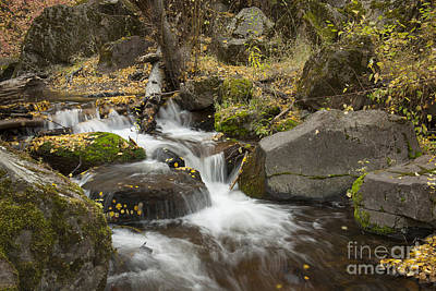 Photograph - Rock Creek Autumn by Idaho Scenic Images Linda Lantzy
