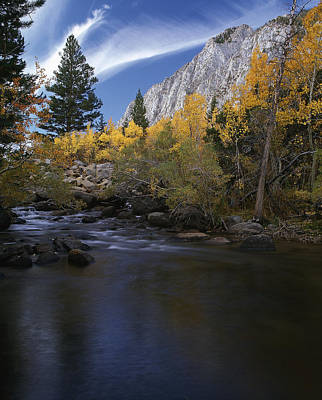 Rock Creek Canyon Gold Art Print