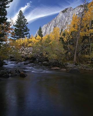 Photograph - Rock Creek Canyon Gold by Paul Breitkreuz