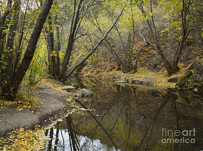 Photograph - Rock Creek by Idaho Scenic Images Linda Lantzy