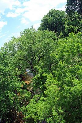 Photograph - Washington's Rock Creek Park by Cora Wandel