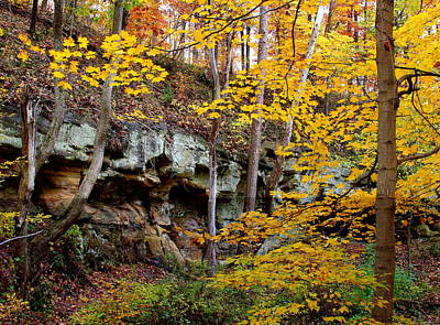 Photograph - Rock Fall Gorge by Virginia Folkman