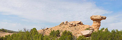 Camel Photograph - Rock Formation On A Landscape, Camel by Panoramic Images