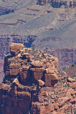 Grand Canyon Photograph - Rock Formations In The Grand Canyon by Natural Focal Point Photography