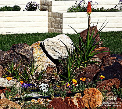 Photograph - Rock Garden Of Hope by Bobbee Rickard