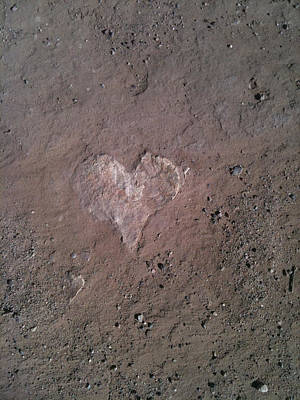 Photograph - Rock Heart by Claudia Goodell