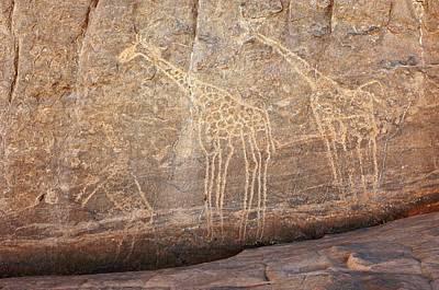 Sahara Photograph - Rock Paintings, Algerian Sahara by Science Photo Library