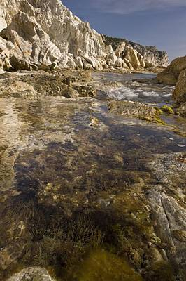 Chios Photograph - Rock Pools, Chios, Greece by Science Photo Library
