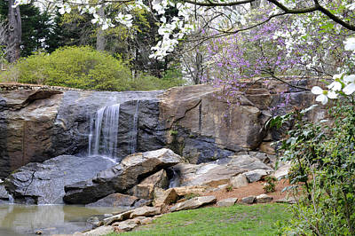 Rock Quarry Falls In Greenville Sc Cleveland Park Art Print