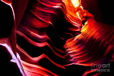 Antelope Wall Art - Photograph - Belly Of The Beast by Az Jackson