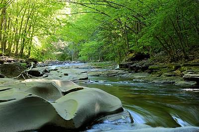 Photograph - Rock Run #1 - Loyalsock State Forest by Joel E Blyler